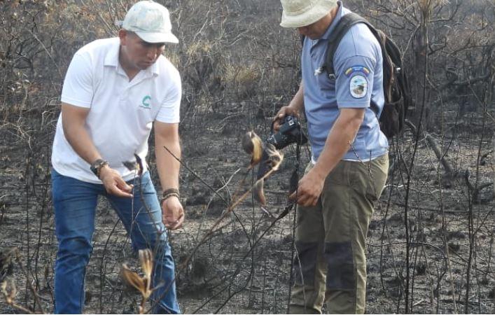 Desafíos medio ambiente en Colombia
