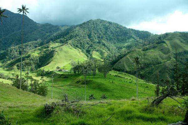 paisaje colombiano